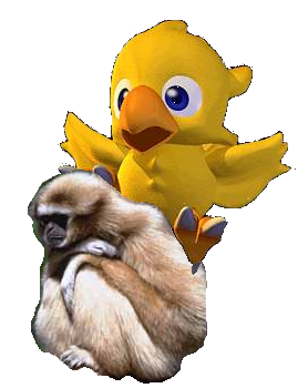 Chocobo riding     a monkey